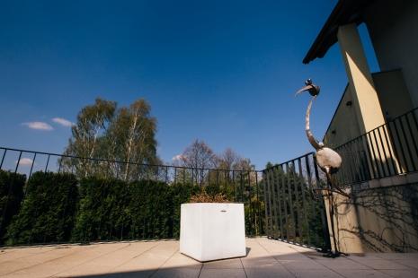 Duże rzeźby ogrodowe - Dekoracje Ogrodowy - Ptaki